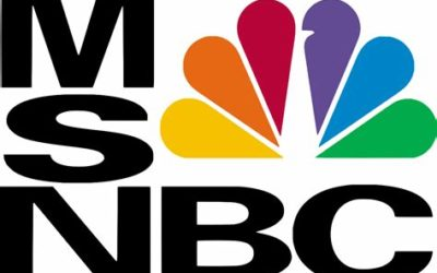 DNC Operatives on MSNBC Equate Doubt in 2020 Election to Mental Incometancy